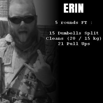 wod hero crossfit erin