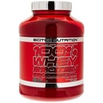 whey scitec nutrition
